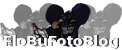 FloBu Logo